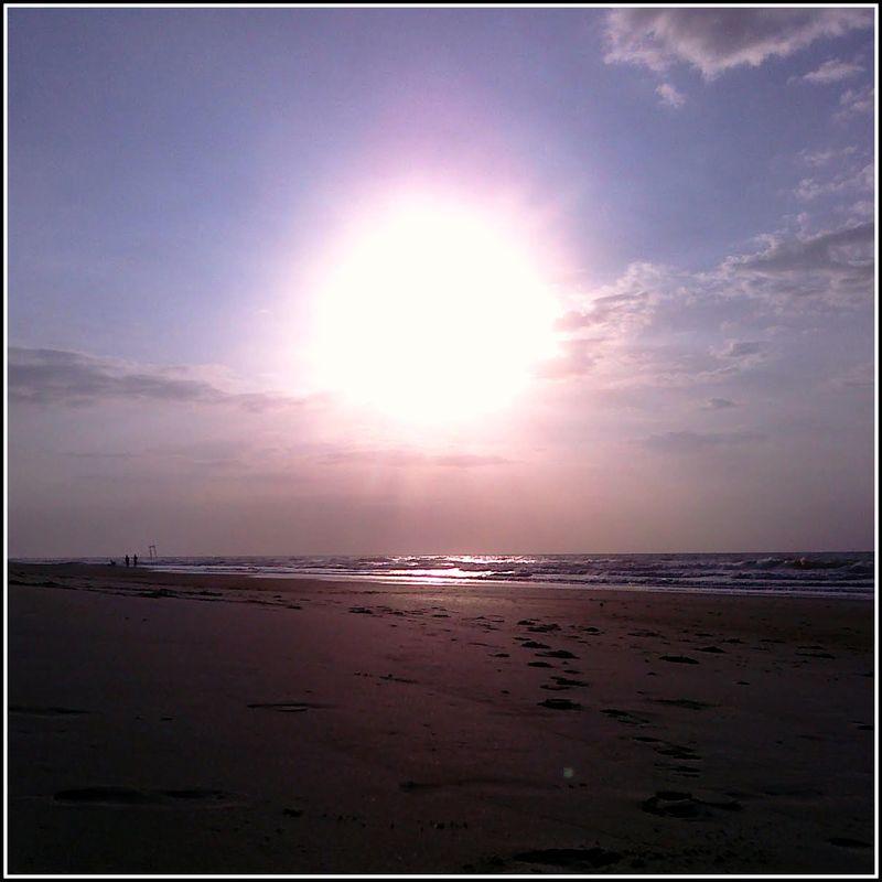 PP Sunrise 2